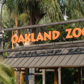 Noll & Tam - Oakland Zoo California Trail - Nonresidential