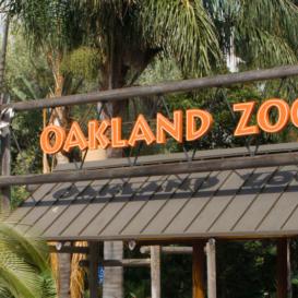 Noll & Tam - Oakland Zoo California Trail - Nonresidential